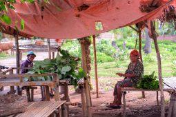 traditional sasak lombok